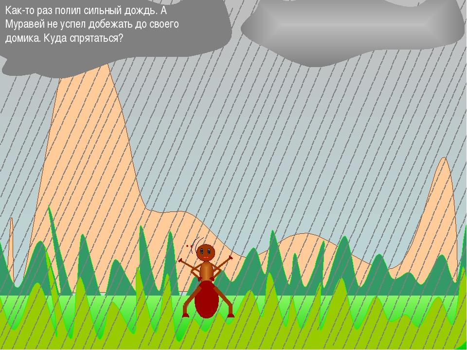 Как-то раз полил сильный дождь. А Муравей не успел добежать до своего домика...