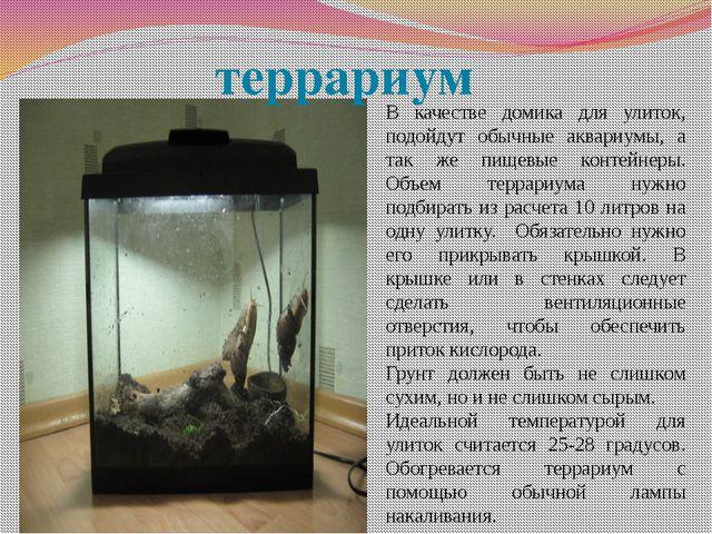 В качестве домика для улиток, подойдут обычные аквариумы, а так же пищевые ко...