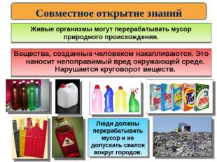 Живые организмы могут перерабатывать мусор природного происхождения. Вещества