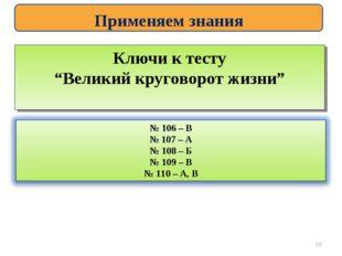 """Применяем знания Ключи к тесту """"Великий круговорот жизни"""" *"""