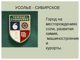УСОЛЬЕ - СИБИРСКОЕ Город на месторождениях соли, развитая химия, машиностроен