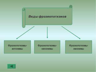 Фразеологизмы- антонимы Фразеологизмы- синонимы Фразеологизмы- омонимы Виды ф