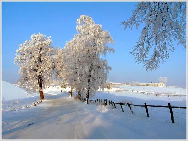 http://content.foto.my.mail.ru/mail/gorb1813/_blogs/i-2008.jpg