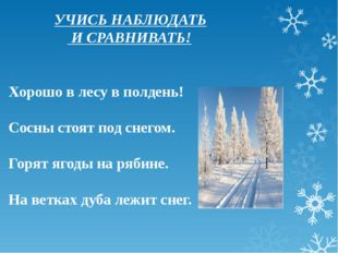 УЧИСЬ НАБЛЮДАТЬ И СРАВНИВАТЬ! Хорошо в лесу в полдень! Сосны стоят под снего
