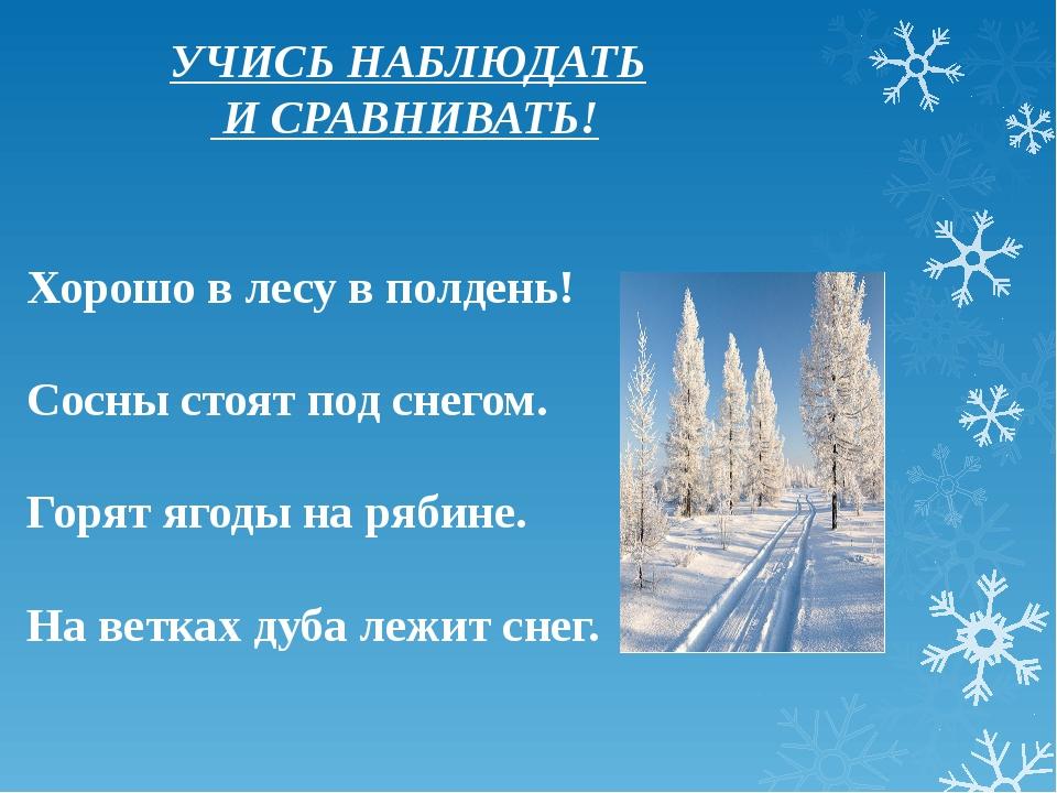 УЧИСЬ НАБЛЮДАТЬ И СРАВНИВАТЬ! Хорошо в лесу в полдень! Сосны стоят под снего...