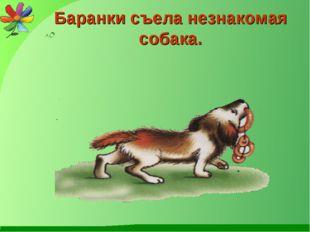 Баранки съела незнакомая собака.