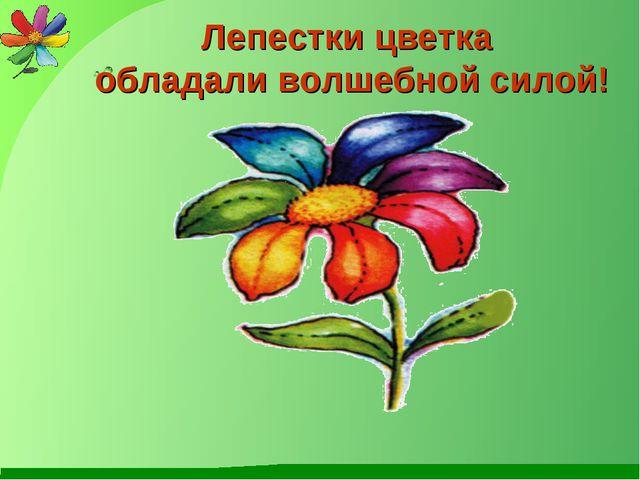 Лепестки цветка обладали волшебной силой!
