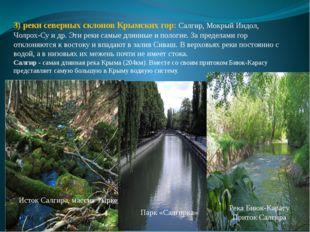 3) реки северных склонов Крымских гор: Салгир, Мокрый Индол, Чолрох-Су и др.