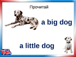 Прочитай a big dog a little dog