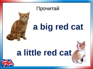 Прочитай a big red cat a little red cat