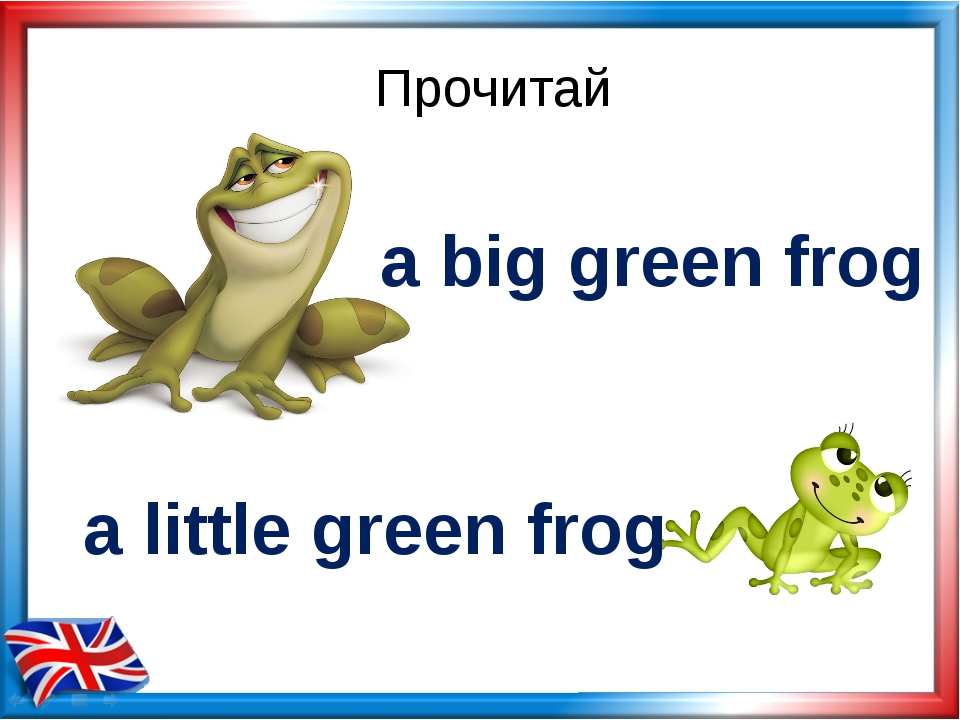 Прочитай a big green frog a little green frog