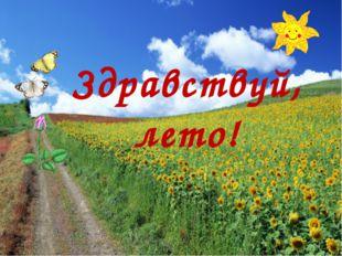 Здравствуй, лето!