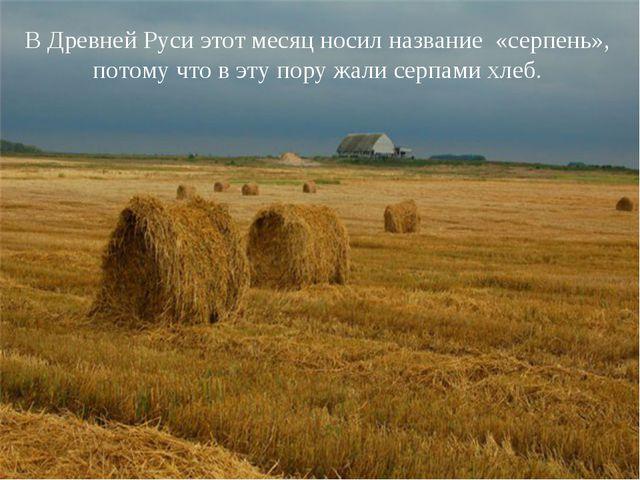 В Древней Руси этот месяц носил название «серпень», потому что в эту пору жал...