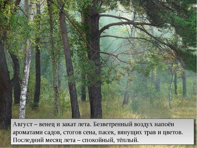 Август – венец и закат лета. Безветренный воздух напоён ароматами садов, стог...