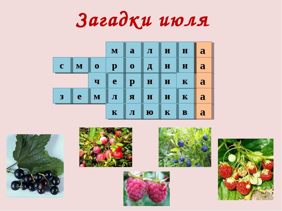 Загадки июля 1 а 2 а а а 3 4 5 а о м с н и л а м и н р е ч н и д о р к и н я...