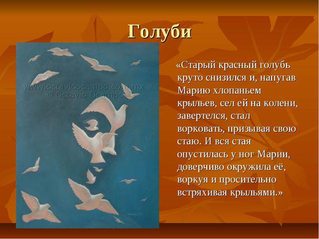 Голуби «Старый красный голубь круто снизился и, напугав Марию хлопаньем крыль...