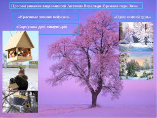 Просматривание видеозаписей Антонио Вивальди. Времена года. Зима. «Один зимни