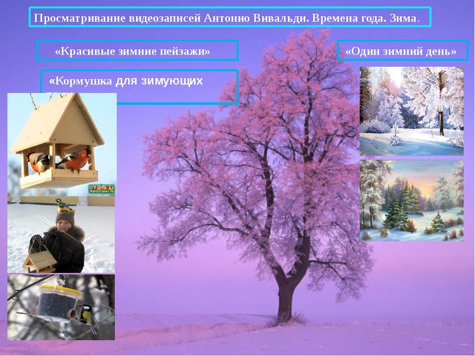 Просматривание видеозаписей Антонио Вивальди. Времена года. Зима. «Один зимни...