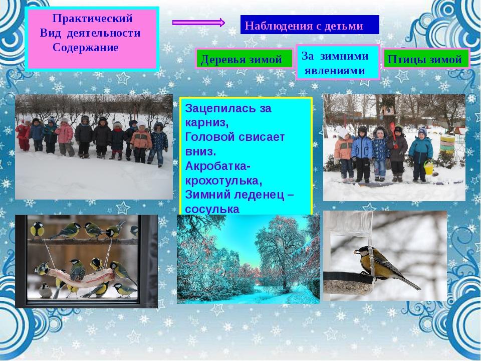 Наблюдения с детьми Деревья зимой Птицы зимой За зимними явлениями Практическ...
