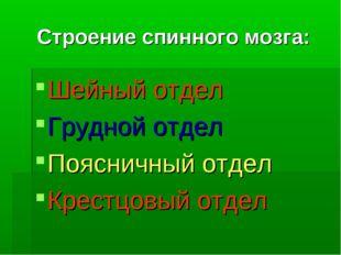 Строение спинного мозга: Шейный отдел Грудной отдел Поясничный отдел Крестцов