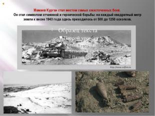 Мамаев Курган стал местом самых ожесточенных боев. Он стал символом отчаянной