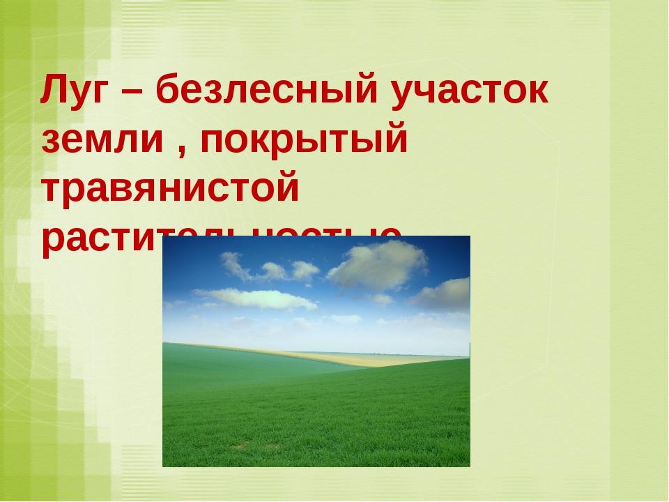 Луг – безлесный участок земли , покрытый травянистой растительностью.