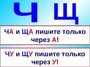 ЧА и ЩА пишите только через А! ЧУ и ЩУ пишите только через У!