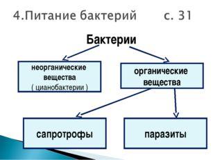 Бактерии неорганические вещества ( цианобактерии ) органические вещества пара