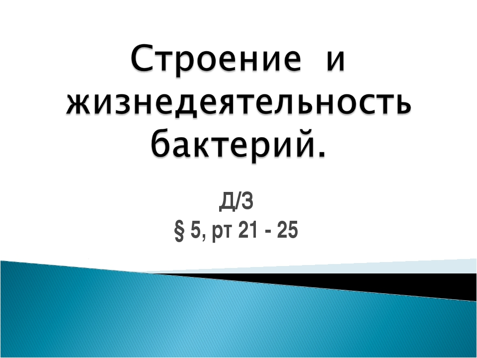 Д/З § 5, рт 21 - 25