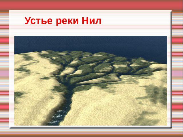 Устье реки Нил
