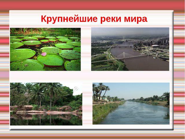 Крупнейшие реки мира