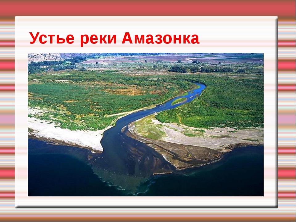 Устье реки Амазонка