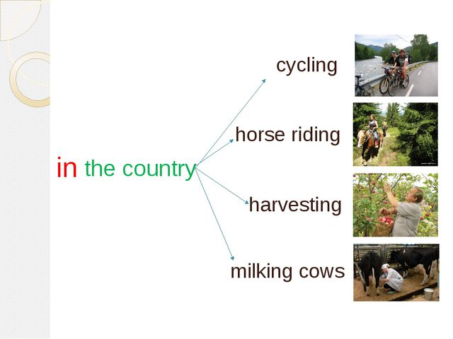 in the country horse riding milking cows harvesting cycling