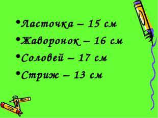 Ласточка – 15 см Жаворонок – 16 см Соловей – 17 см Стриж – 13 см