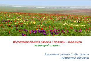 Выполнил: ученик 1 «б» класса Шеркешев Мингиян Исследовательская работа «Тюль