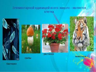 Элементарной единицей всего живого - является клетка бактерии растения животн