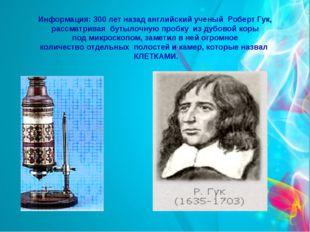 Информация: 300 лет назад английский ученый Роберт Гук, рассматривая бутылочн