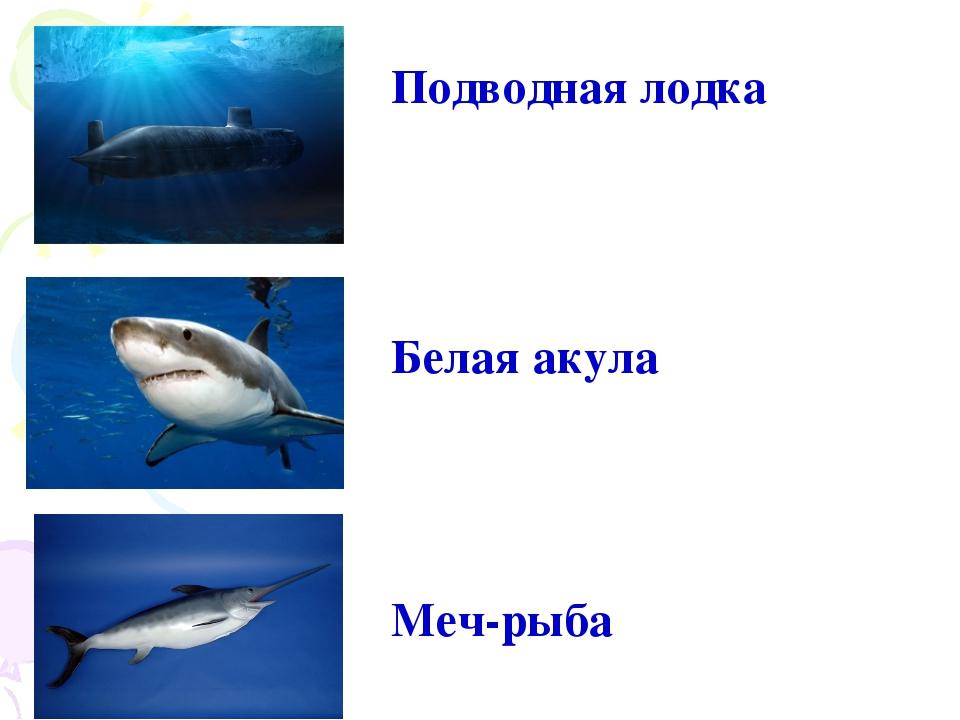 Подводная лодка Белая акула Меч-рыба