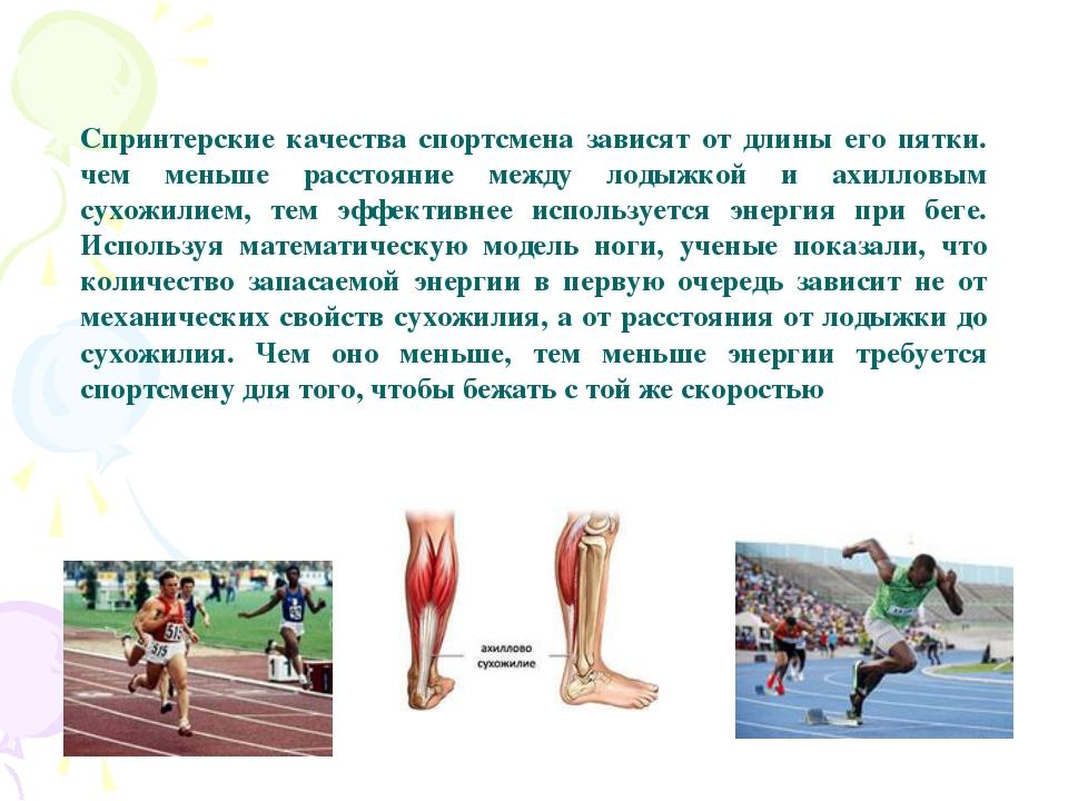 Спринтерские качества спортсмена зависят от длины его пятки. чем меньше расс...