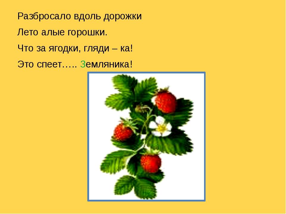 Разбросало вдоль дорожки Лето алые горошки. Что за ягодки, гляди – ка! Это с...