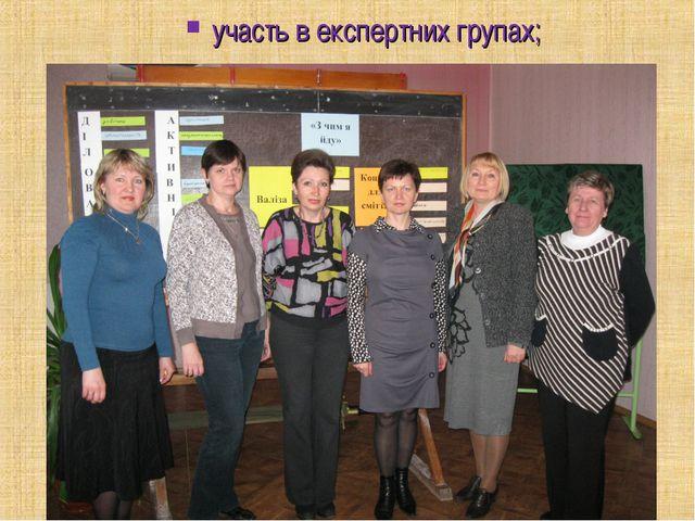 участь в експертних групах;