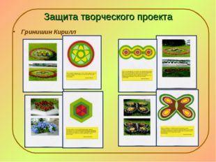 Защита творческого проекта Гринишин Кирилл