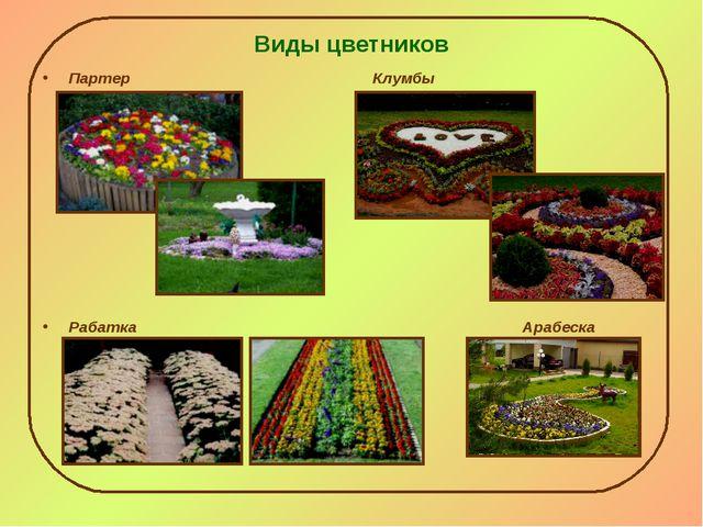 Виды цветников Партер Клумбы Рабатка Арабеска