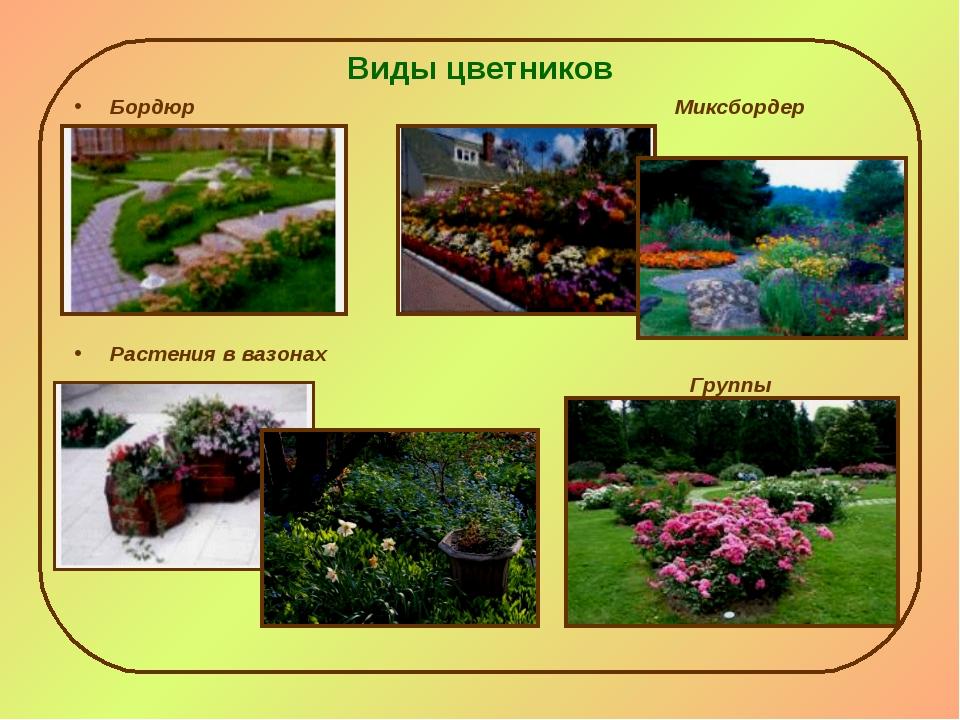 Виды цветников Бордюр Миксбордер Растения в вазонах Группы