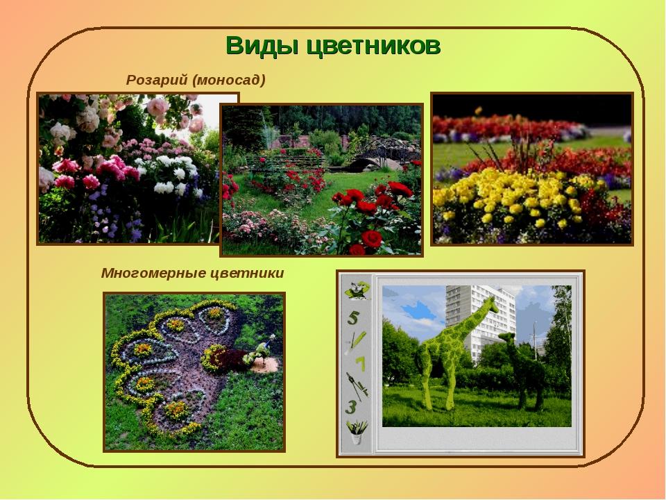 Виды цветников Розарий (моносад) Многомерные цветники