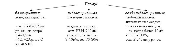 hello_html_71ff504e.jpg