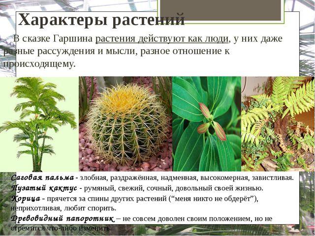 Характеры растений В сказке Гаршина растения действуют как люди, у них даже р...