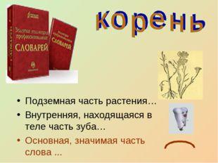 Подземная часть растения… Внутренняя, находящаяся в теле часть зуба… Основная