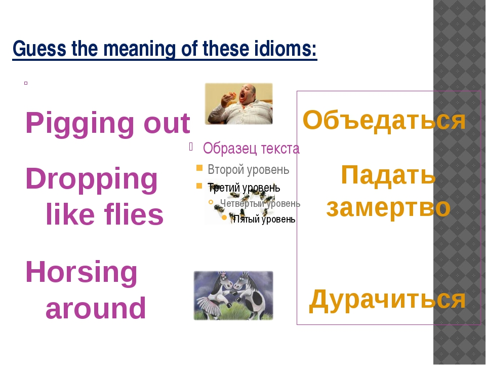 Guess the meaning of these idioms: Объедаться Падать замертво Дурачиться Pigg...