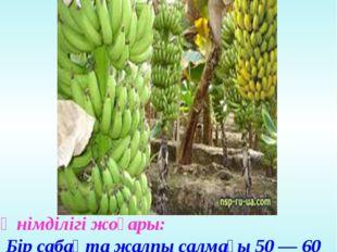 Өнімділігі жоғары: Бір сабақта жалпы салмағы 50 — 60 кг, 300-дей жеміс өседі.